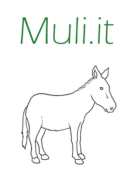 Il mulo for Asino e cavalla